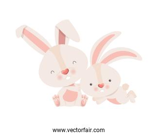 cute rabbits isolated icon