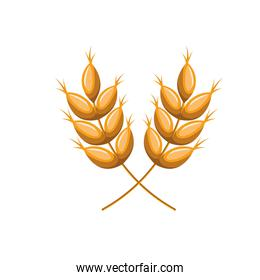 wheat leaves isolated icon