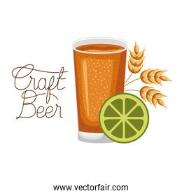 craft beer label with glass and wheat