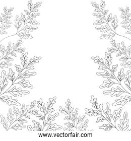 frame with flowers isolated icon