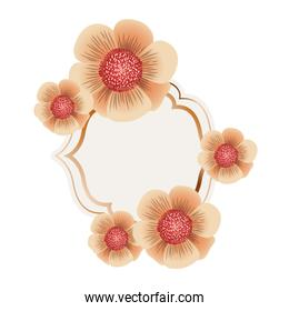 frame with flower isolated icon