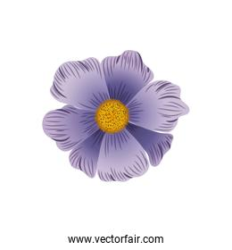 beautiful flowers isolated icon