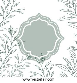 frame with plants and herbs isolated icon