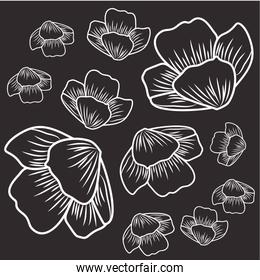 pattern of flowers isolated icon