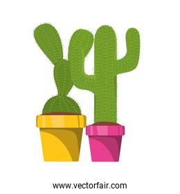 cute cactus with pot isolated icon