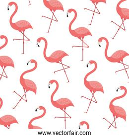 pink flamingo pattern isolated icon