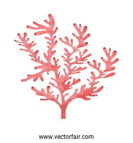 seaweed pattern isolated icon