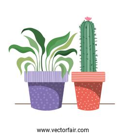 houseplants with potted isolated icon