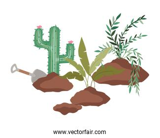 cactus and tree to plant isolated icon