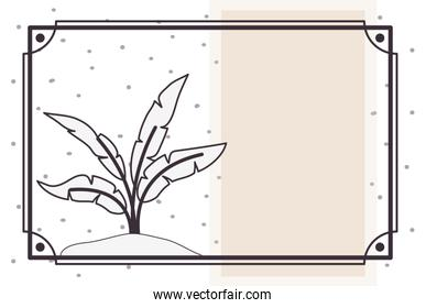 pattern plant with frame isolated icon