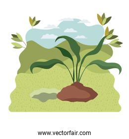 tree to plant in landscape isolated icon