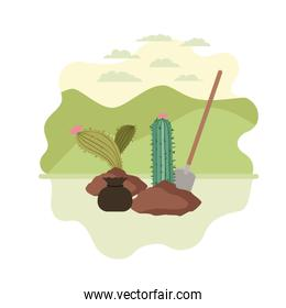 cactus to plant in landscape isolated icon