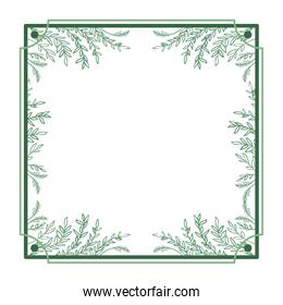 frame with foliage isolated icon
