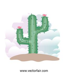 cactus in landscape isolated icon