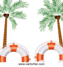 pattern of palm tree with coconut in white background