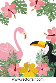 pattern of tucan and flemish with summer flowers