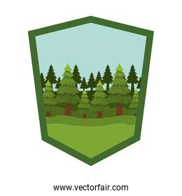 Isolated pine trees inside shield label design