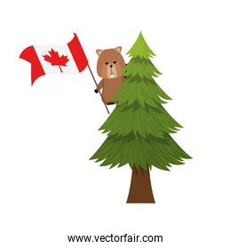 Beaver forest animal of canada design