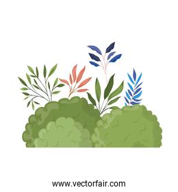landscape with shrubs and leaves isolated icon