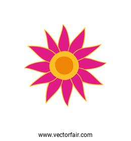 colorful flower of the india icon
