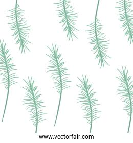 pattern of branch with leaf in white background
