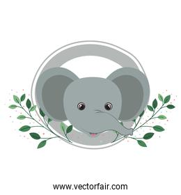 cute elephant with branch and leaves of background