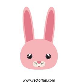head of bunny for baby card with white background