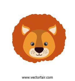 head of lion for baby card with white background