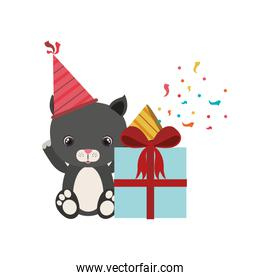 cute cat with gift box