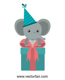 cute elephant with gift box