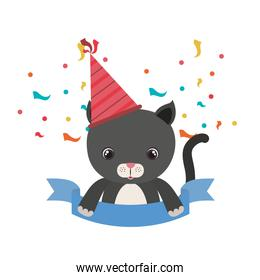 cute cat animal with party hat on white background