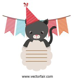 birthday card and cat with hat party