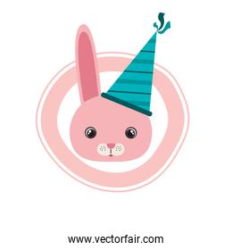 head of bunny with party hat on white background