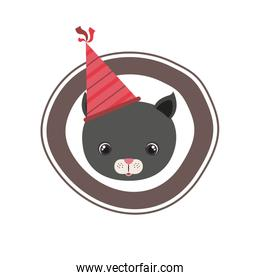 head of cat animal with party hat on white background