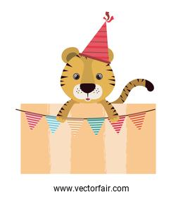 birthday card and tiger with hat party