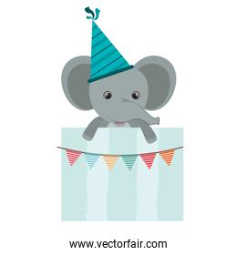 birthday card and elephant with hat party