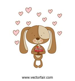 cute puppy with hearts and cake