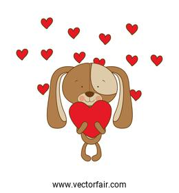 isolated puppy with hearts in hands