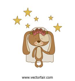 cute puppy with wedding dress isolated icon