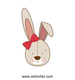 head of cute bunny on white background