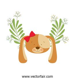 head of cute puppy with background garland