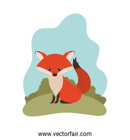 cute fox with background landscape