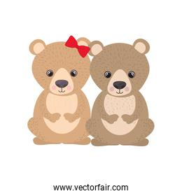 cute couple of bears on white background