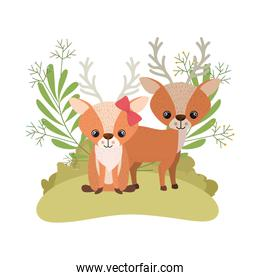 cute couple of deers with wreath