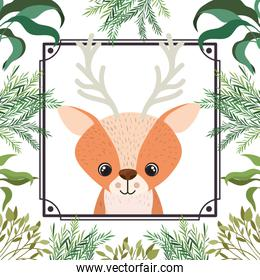 cute and adorable deer with frame