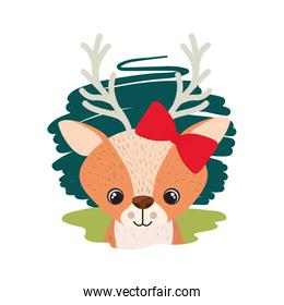 cute and adorable deer with white background