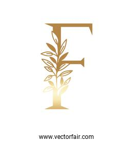 letter of the alphabet of golden color