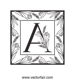 letter of the alphabet with vintage style frame