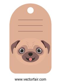 dog card with space to write