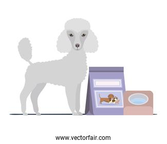 dog with bowl and pet food on white background